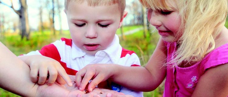 Kinder erleben Natur
